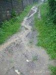 rain-water-on-hillside-driveway
